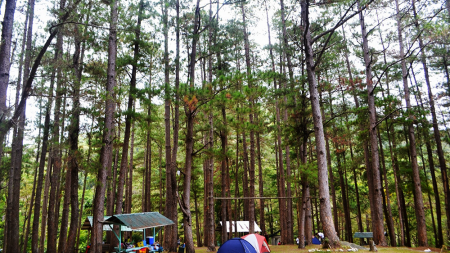 Little Baguio of Iloilo – Bucari, Leon