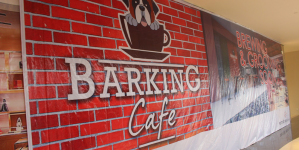 Barking Café – Dine with Man's Best Friends